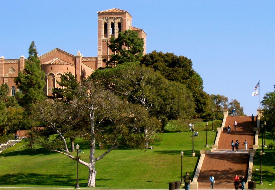 UCLA Accelerated Nursing